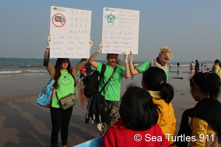 Campaigning for sea turtle conservation