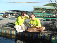 Volunteers with rehabilitated sea turtle