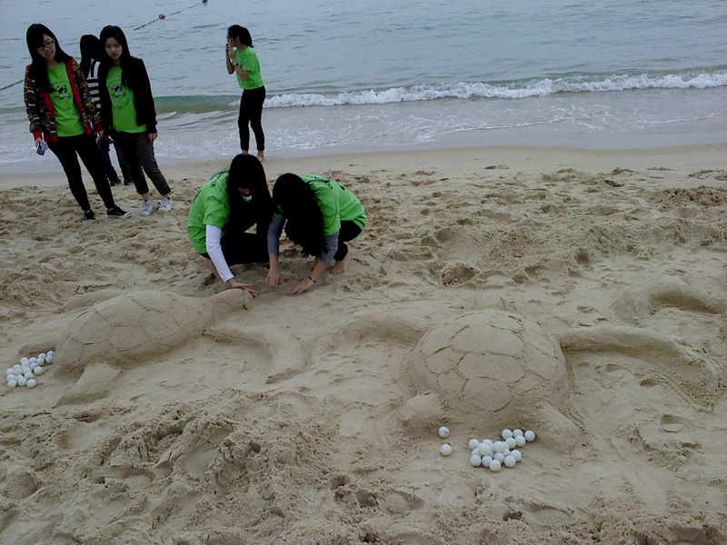 Students build sea turtle shaped sandcastles
