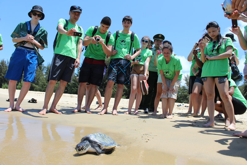 Student group releases sea turtle