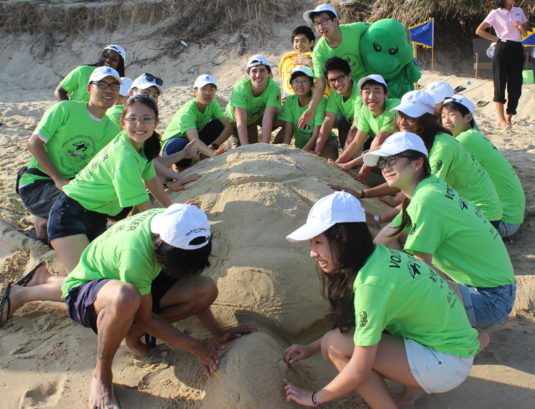 Students build turtle sand castles
