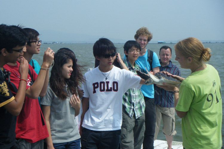 Students see sea turtles