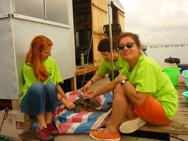 Eco tourist helps sea turtle