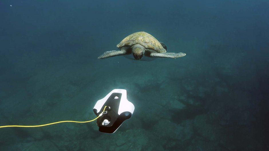 Underwater drone captures a photo of a sea turtle
