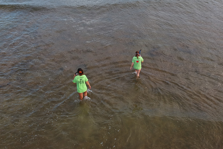 Drone captures a photo of Sea Turtles 911 volunteers surveying for sea turtles
