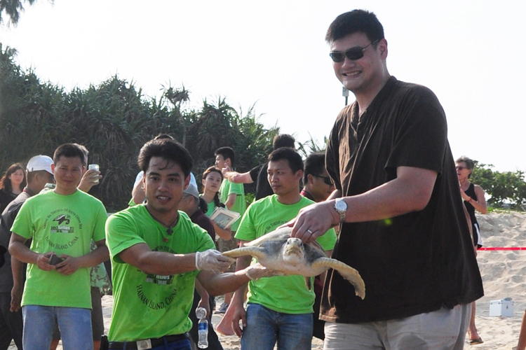 Yao Ming releases sea turtle with Frederick Yeh